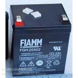 武汉FIAMM非凡/意大利非凡FGH20502/12V5AH风电变桨专用蓄电池