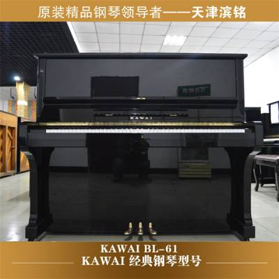 天津成人钢琴经销商-天津成人钢琴-滨铭君睿