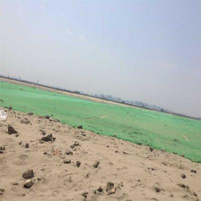 盖煤防尘网 绿色盖土网 防老化遮阳网