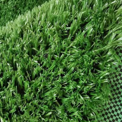 江瀚 人工草坪足球场 人工草坪室内装饰 郑州人工塑料草坪