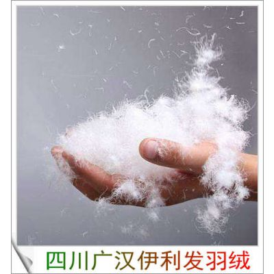 1000+清洁度水洗新国标80白鹅绒