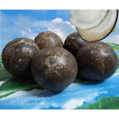海南特产 新鲜椰子皇椰王肉毛老青去皮热带水果海鸡冻煲汤海南水果 热带新鲜特产应季去皮大椰子皇老批发印