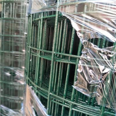 西藏养殖荷兰网 广东钢丝网围栏网 pvc浸塑荷兰网供销商