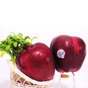 成都郫都区进口水果报关办理流程 报关业务覆盖全国