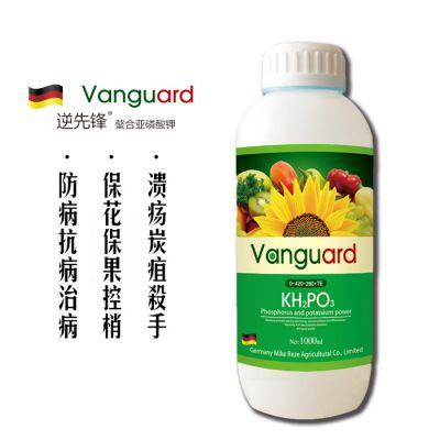 进口亚磷酸钾叶面肥高磷高钾肥料