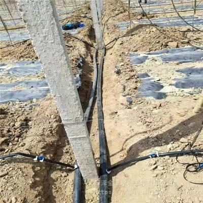 扬州市海口自动化灌溉设备厂家蔬菜灌溉温室灌溉设备