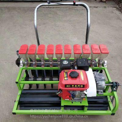精量蔬菜播种机 拖拉机牵引谷子播种机 高粱绿豆播种施肥机