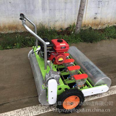 芝麻香菜播种机 汽油播种机-10行油菜精播机价格鲁强机械