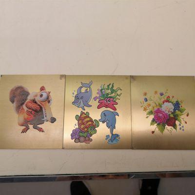 ABS卡式U盘印花机 PVC卡片打印机 塑料外壳打印机