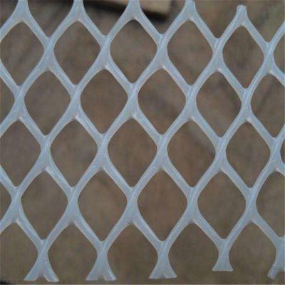 纯新料养殖网 白色养殖网 养殖漏粪网