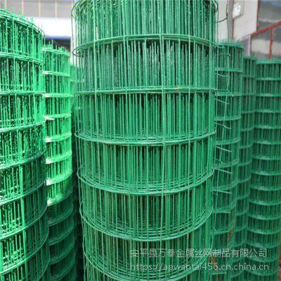 PVc包塑镀锌网 养殖用铁网 圈树林地隔离网