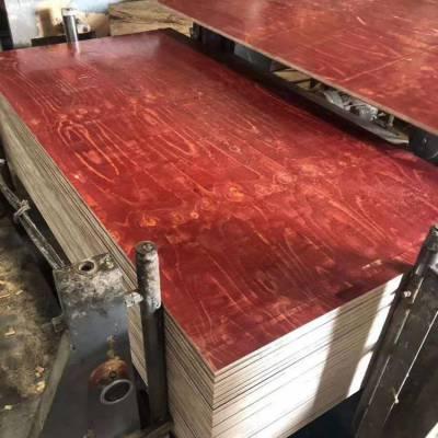 台州胶合建筑模板 房建木工板 全整芯板