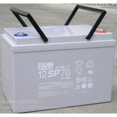 武汉FIAMM非凡/意大利非凡蓄电池12SP100/12V100AH售全国