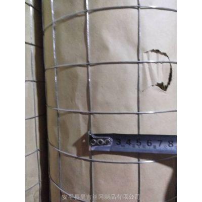 河北呈吉批发钢结构<b>钢丝网</b> 岩棉用电焊网 厂房用电焊网 钢结构电焊网