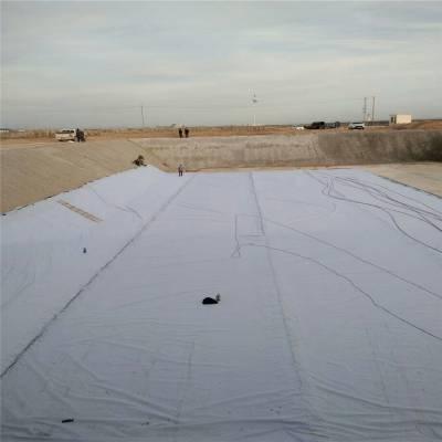 水库防渗700克复合土工膜价格
