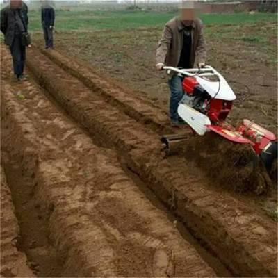 旋土起垄机 种植封葱机 种黄姜开沟培土机 圣通
