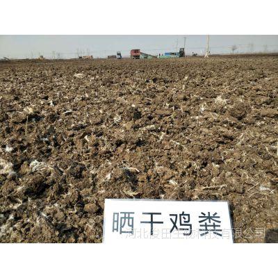 广西南宁有没有干鸡粪厂家 施肥用干鸡粪好还是用牛羊粪好