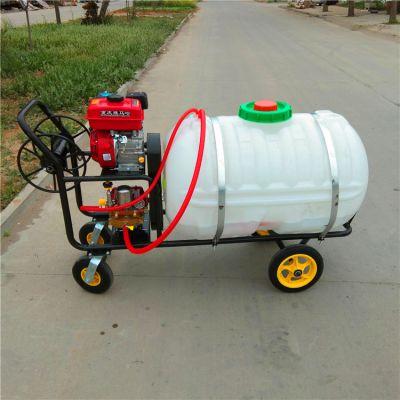 河南园大棚省时高效 手推式打药机 自带30米软管