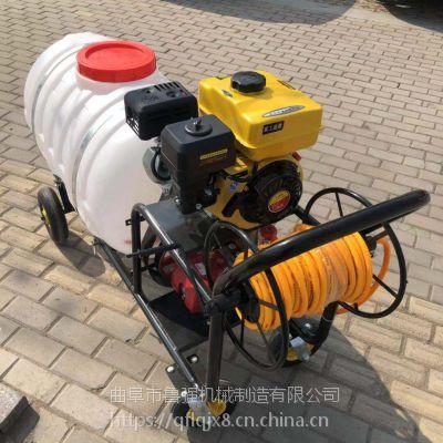 大棚蔬菜灭菌除虫打药机 四轮汽油打药机 柴油机带喷雾器鲁强机械
