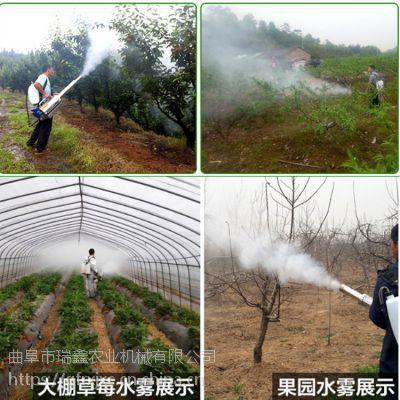 林地茶园烟雾机限时促销 厂家直销射程远弥雾机 脉冲式烟雾水雾机