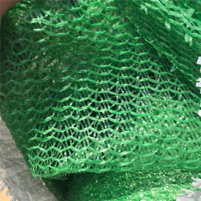 三针盖土网 盖煤网厂家 防尘绿网