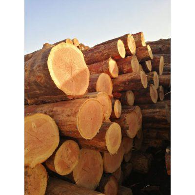 建筑木方加工厂-隆旅木业(在线咨询)-漯河建筑木方
