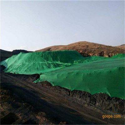 两针盖土网 道路施工覆盖网 苗圃施工防尘网