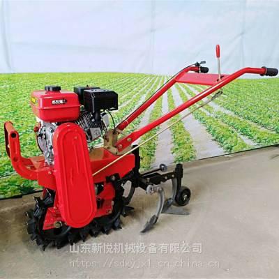新悦汽油履带式农用播种机 茶园施肥开沟微耕机 小多功能双链辊犁地机