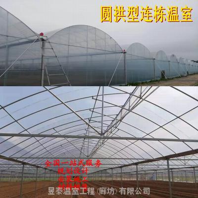 圆拱弧形薄膜连栋棚蔬菜拱棚连栋温室大棚种植育苗大棚