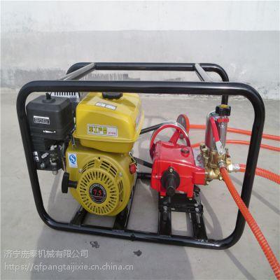 高压泵26注的喷雾器/喷药机药秆长90厘米