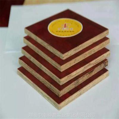 房建竹胶板 周转10次以上 质量三包 湖南厂家直供性价比高