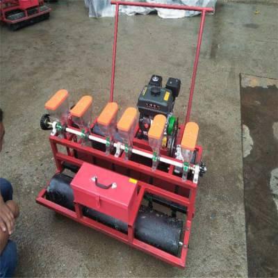 水稻六行播种机 拖拉机悬挂式播种机 蔬菜菠菜青菜播种机