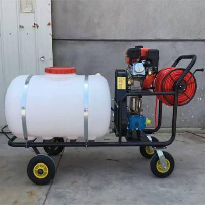 科圣 手推式拉管式打药机 手推式高压园林绿化喷雾器