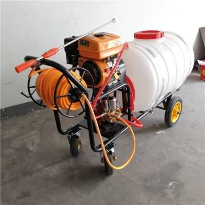 手推大容量喷雾器 小区绿化打药机 垃圾场消毒喷雾机