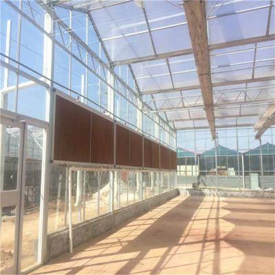 广西桂林玻璃温室大棚建设厂家 盛鸿厂家定制
