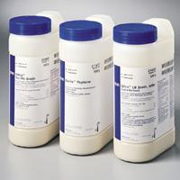 美国BD Difco 241910生物素测试培养基