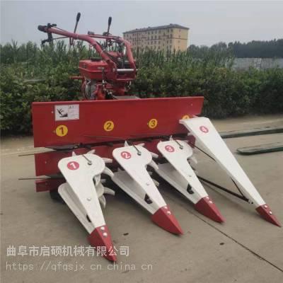 启硕机械生产手推汽油玉米收割机 柴油多用途药材割晒机 晚稻旱稻割晒机价格