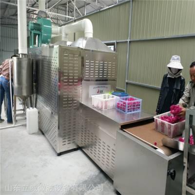 济南金银花微波杀青干燥设备厂家