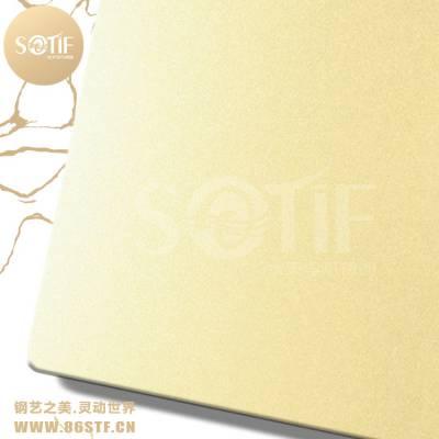 江西星级酒店304不锈钢酒店大厅装潢喷砂钛金板