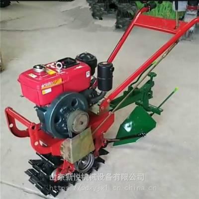 新悦水冷6马力蔬菜耘地犁地机 大马力柴油开沟机 单链辊施肥播种机