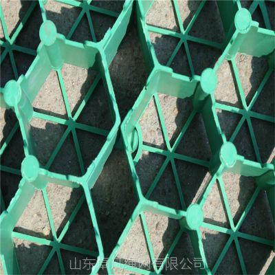 山东厂家直销HDPE草坪格绿化工程护坡斜坡专用植草格停车场消防车道塑料草坪砖