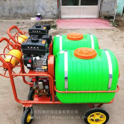 汽油葡萄园打药机/手推式高压汽油喷雾机/果树农用喷雾器