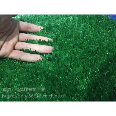 辽宁省鞍山市铁西厦门 人工草坪每平米价格环保地毯直销