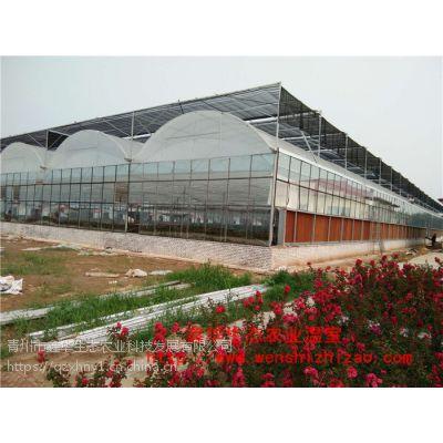 蔬菜花卉农业大棚 北京连栋温室工程 智能连栋温室 新型温室大棚安装