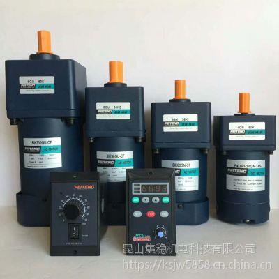 调速电机5IK60RGN-CF/5GN120K配飞腾调速器
