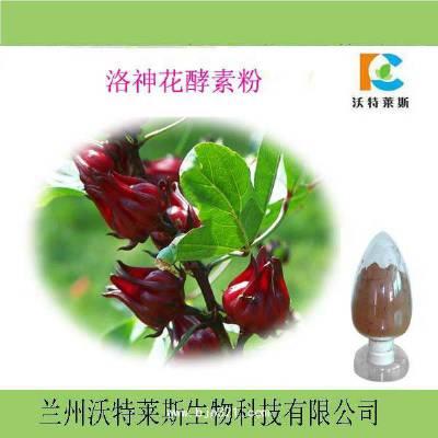 玫瑰茄提取物 25%花青素 10% 原料粉 洛神葵提取物 现货包邮