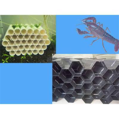 塑料板虾巢 龙虾养殖屋 人工龙虾养殖巢
