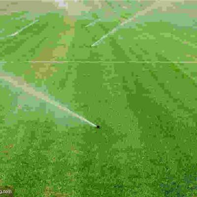 滴灌设计-滴灌-春苏农业(查看)