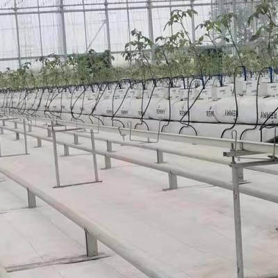 北京泓稷科技公司(图)-升降草莓栽培槽公司-升降草莓栽培槽