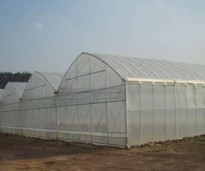铁岭钢架新型温室大棚货真价实「在线咨询」